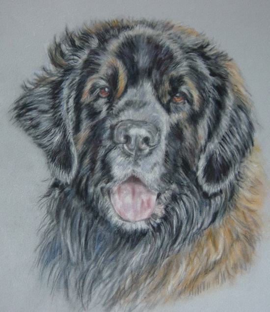 leonberger painting